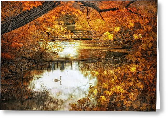 Fall Trees Greeting Cards - Golden Pond Greeting Card by Jessica Jenney