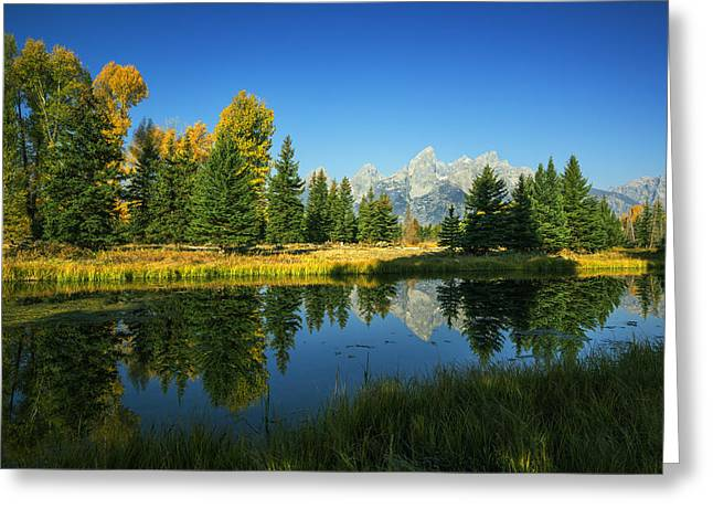 Reflections In River Greeting Cards - Teton Autumn Greeting Card by Vishwanath Bhat