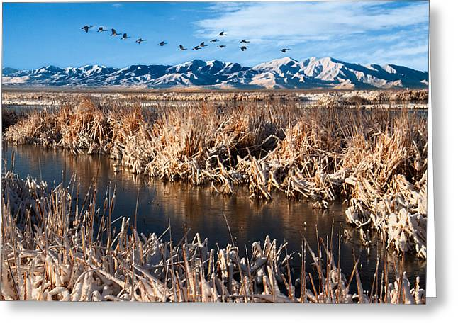 Snowy Day Greeting Cards - Great Salt Lake Utah Greeting Card by Utah Images