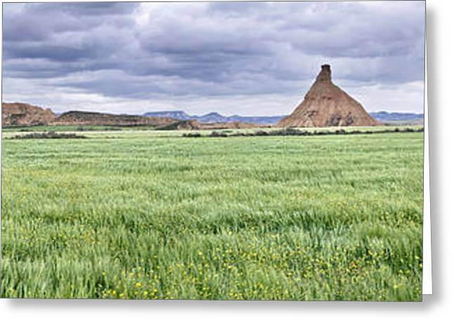 Park Scene Greeting Cards - Green Grass Growing In Bardenas Reales Greeting Card by Panoramic Images