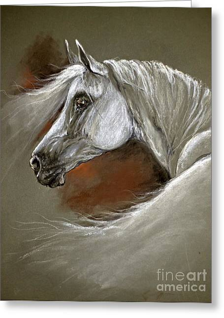 White Horse Pastels Greeting Cards - Grey arabian horse Greeting Card by Angel  Tarantella