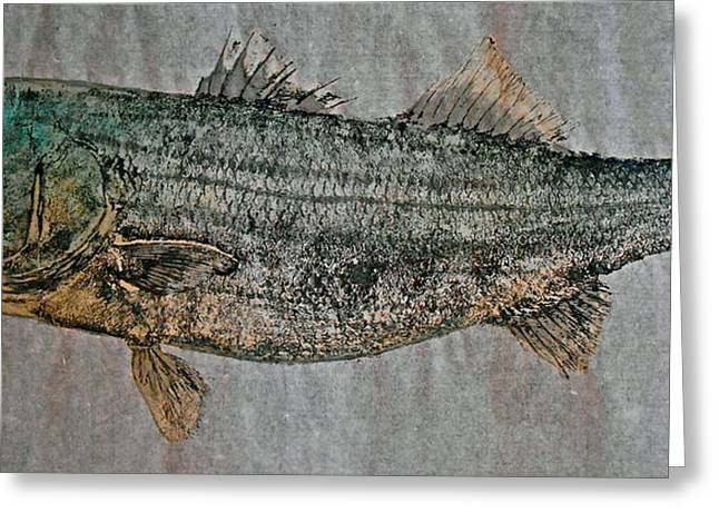 Striped Marlin Greeting Cards - Gyotaku - Striped Bass - Rock Fish - Striper Greeting Card by Jeffrey Canha