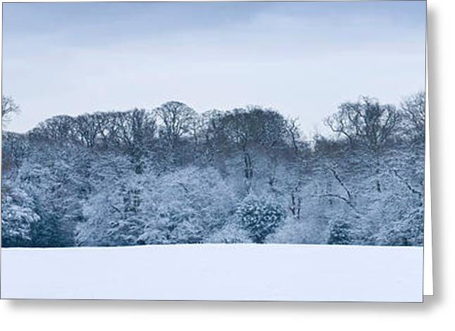 Hampstead Greeting Cards - Hampstead Heath In Winter, North Greeting Card by Panoramic Images
