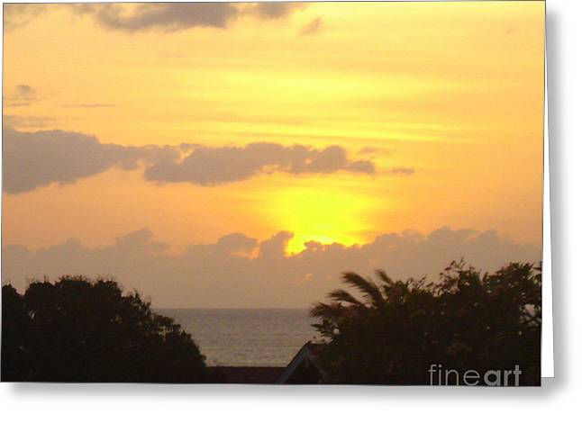 Lahaina Greeting Cards - Hawaiian Sunset Greeting Card by Rachel Munoz Striggow