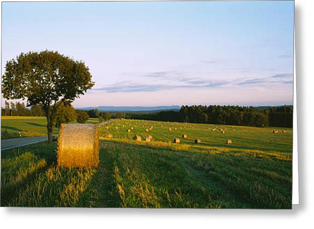 Hay Bales Photographs Greeting Cards - Hay Bales In A Field, Germany Greeting Card by Panoramic Images
