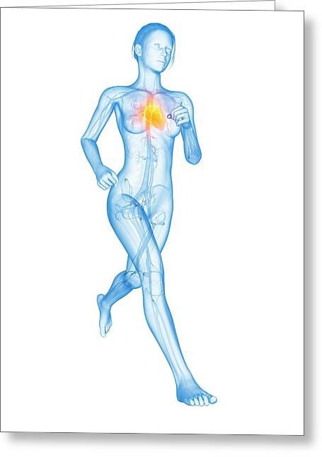 Heart Of A Runner Greeting Card by Sebastian Kaulitzki