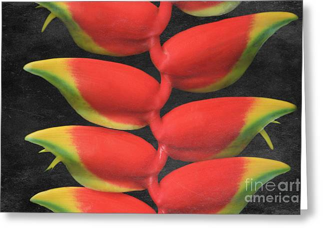 Monocots Greeting Cards - Heliconia rostrata Greeting Card by Sharon Mau