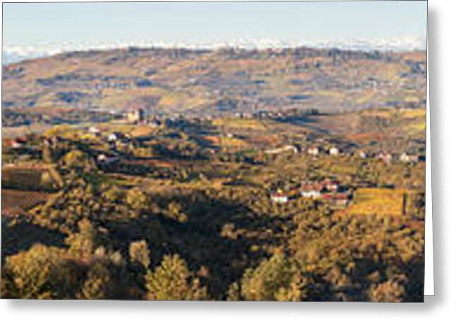 Vineyard Landscape Greeting Cards - High Angle View Of Vineyards Greeting Card by Panoramic Images