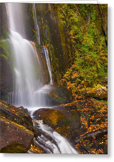 Water Flowing Greeting Cards - High Shoals Falls Greeting Card by Tom Hirtreiter