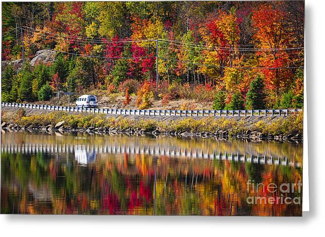 Driving Greeting Cards - Highway through fall forest Greeting Card by Elena Elisseeva