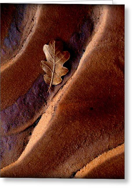 Steadfast Greeting Cards - HIS Refuge.. Greeting Card by Al  Swasey