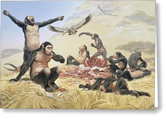 Palaeolithic Greeting Cards - Homo habilis hunting, artwork Greeting Card by Science Photo Library