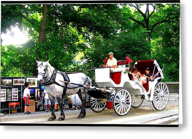Horse And Carriage In Central Park Greeting Card by Dora Sofia Caputo Photographic Art and Design
