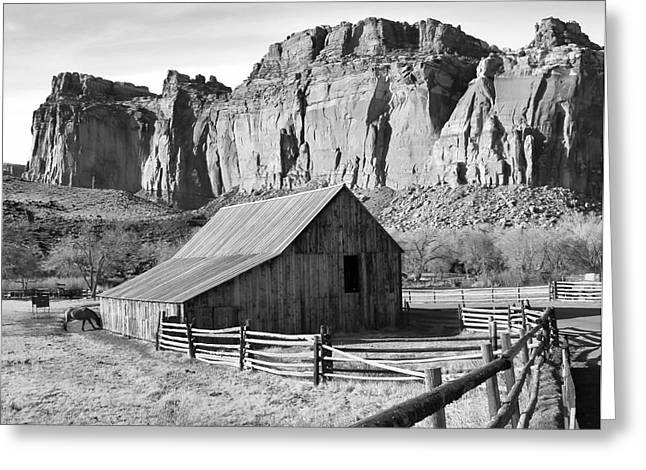Split Rail Fence Greeting Cards - Horse Barn in Fruita Utah Greeting Card by Jack Schultz