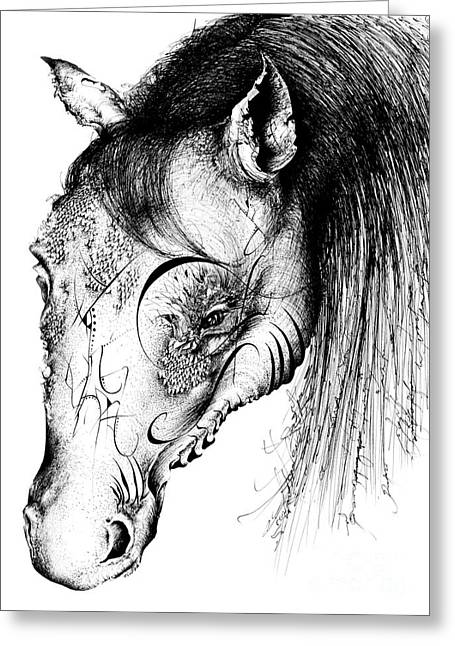 Wild Life Drawings Greeting Cards - Horse Head Greeting Card by Penelope Fedor