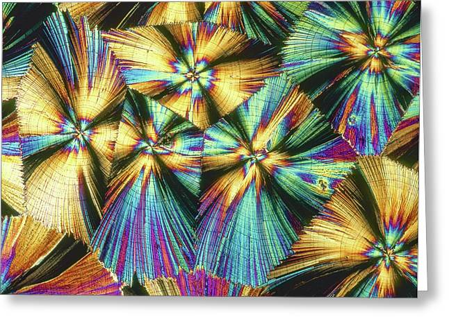 Human Growth Hormone Crystals Greeting Card by Alfred Pasieka