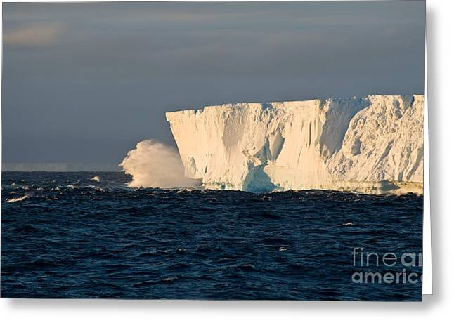 Tabletop Greeting Cards - Iceberg Greeting Card by John Shaw