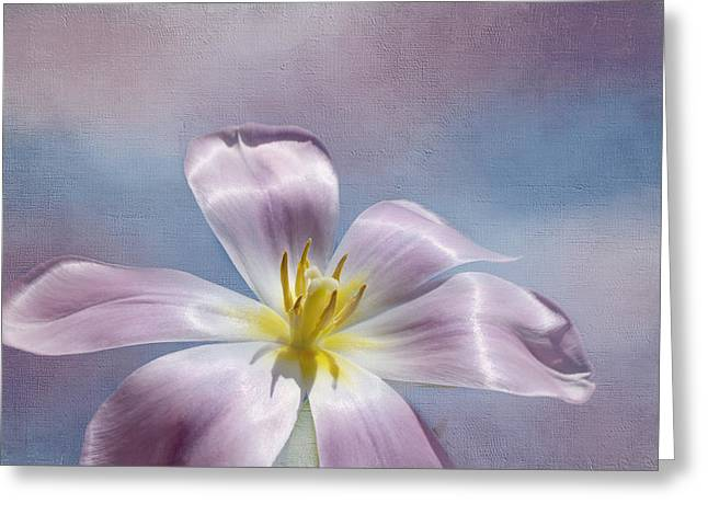 Mother Gift Greeting Cards - Inner Glow Greeting Card by Kim Hojnacki