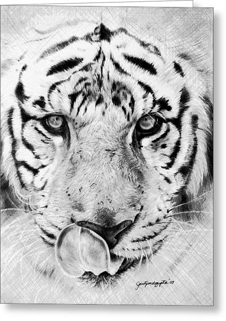 Bengal Drawings Greeting Cards - Into You Greeting Card by Janet Pancho Gupta