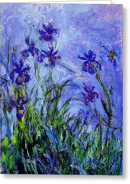 Irises Greeting Card by Celestial Images