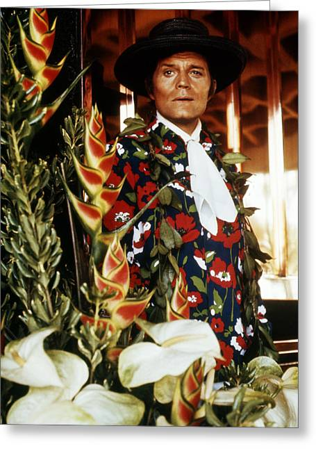 O Lord Greeting Cards - Jack Lord in Hawaii Five-O  Greeting Card by Silver Screen