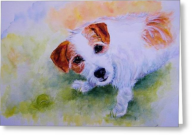 Dog With Tennis Ball Greeting Cards - Play Ball? Greeting Card by Carolyn Gray