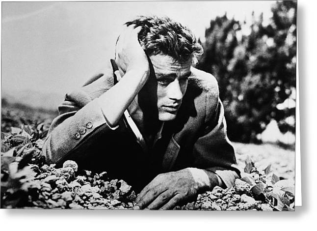Publicity Shot Photographs Greeting Cards - James Dean Greeting Card by Nomad Art And  Design