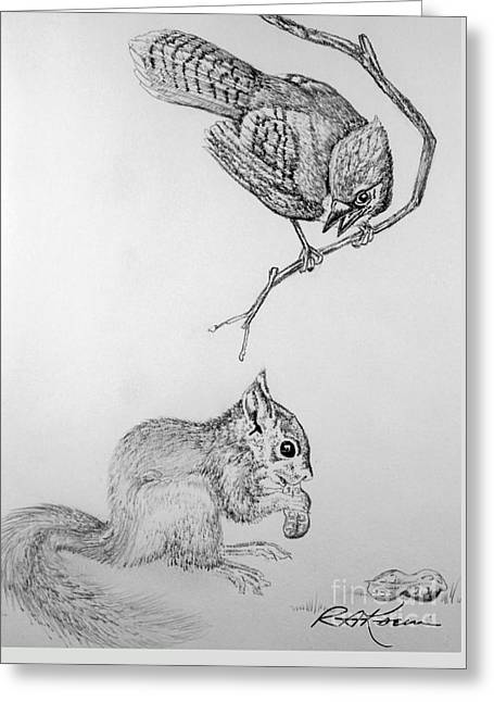 Jay Cock And Squirrel Kit Greeting Card by Roy Anthony Kaelin