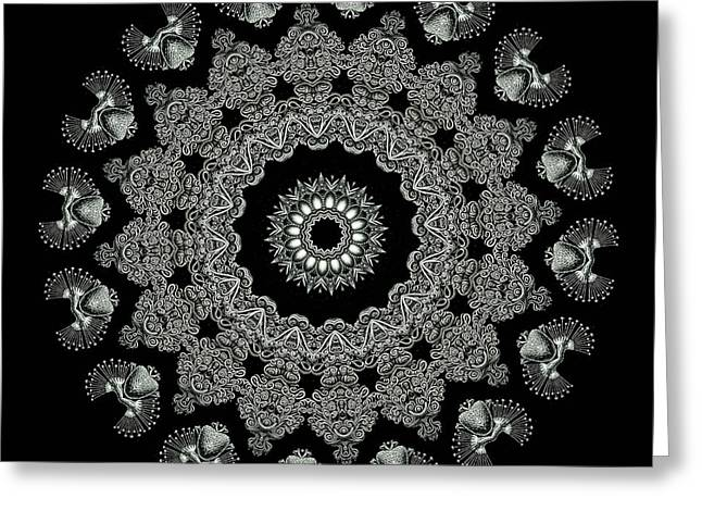 Sea Creatures Greeting Cards - Kaleidoscope Ernst Haeckl Sea Life Series Black and White Set 2 Greeting Card by Amy Cicconi