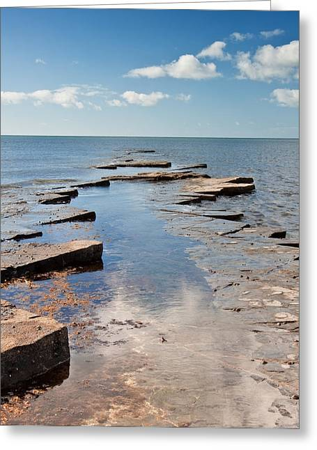 Ledge Greeting Cards - Kimmeridge Bay seascape Greeting Card by Matthew Gibson