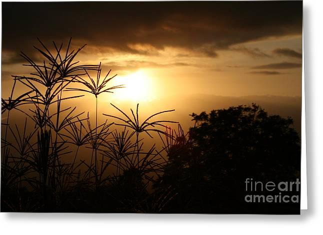 Ocean Photography Greeting Cards - Kula Malu Sunset Greeting Card by Pharaoh Martin