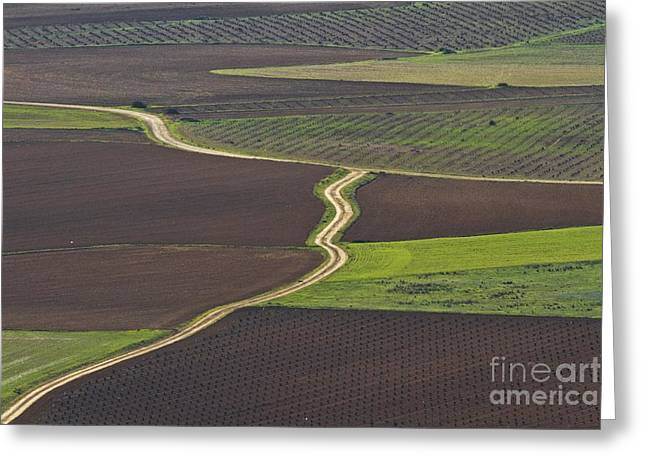 Mancha Greeting Cards - La Mancha Landscape - Spain Series-seis Greeting Card by Heiko Koehrer-Wagner