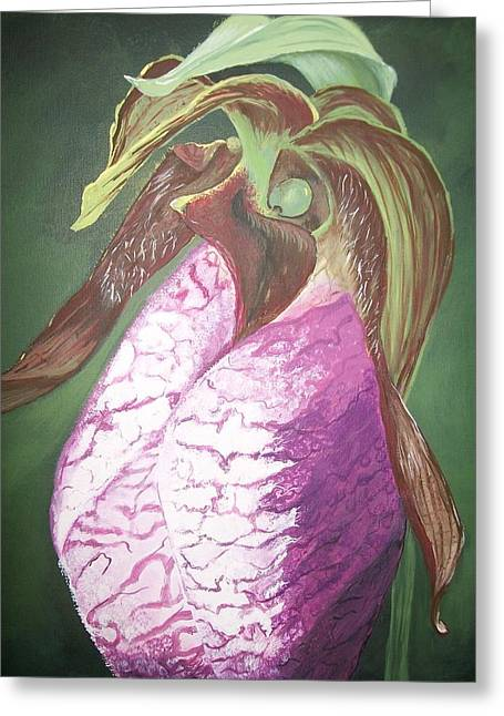 Fushia Paintings Greeting Cards - Lady Slipper Orchid Greeting Card by Sharon Duguay