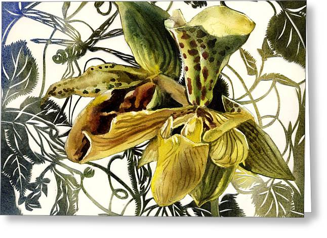 Alfred Ng Art Greeting Cards - Ladyslipper Orchid Greeting Card by Alfred Ng