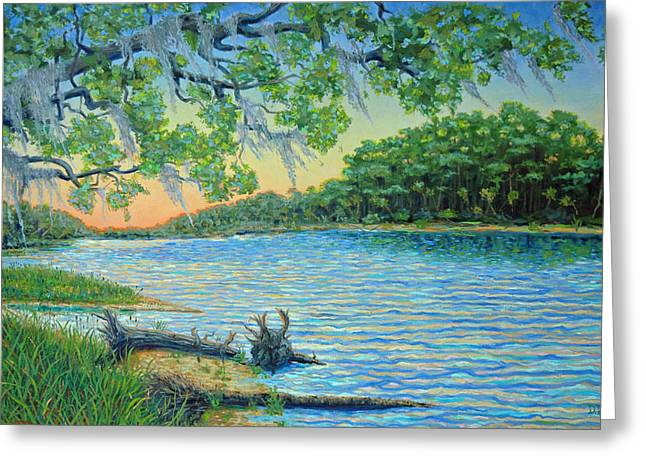 Frogmore Greeting Cards - Lagoon at Hunting Island Greeting Card by Dwain Ray
