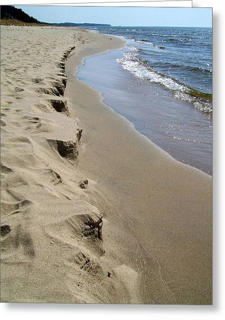 Sparkling Beach Greeting Cards - Lake Michigan Shoreline Greeting Card by Michelle Calkins