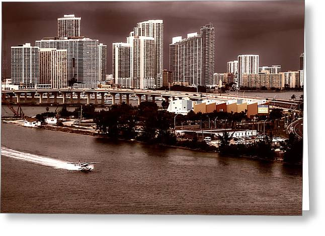 Sienna Greeting Cards - Landing in Miami Bay Greeting Card by Mountain Dreams