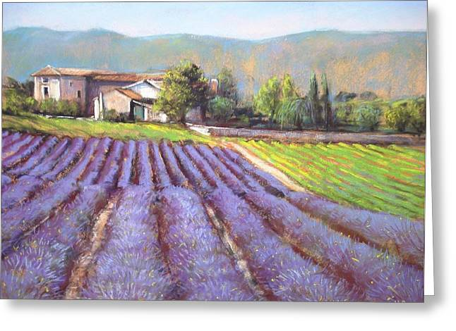Bright Pastels Greeting Cards - Lavender field Greeting Card by Cecile Houel