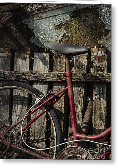 Ten Speed Greeting Cards - Left Greeting Card by Margie Hurwich
