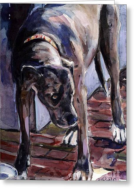 Brindle Greeting Cards - Legs Greeting Card by Molly Poole