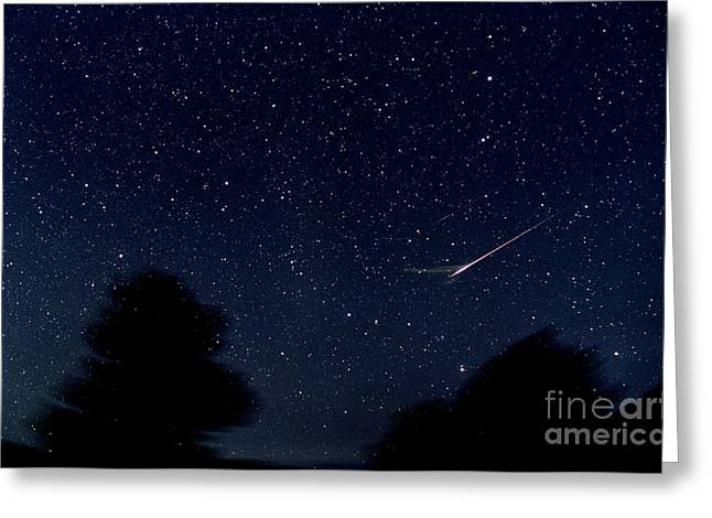 Meteors Greeting Cards - Leonid Meteor Greeting Card by John Chumack