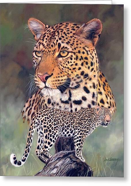 David Greeting Cards - Leopard Greeting Card by David Stribbling