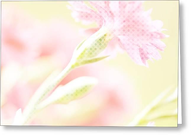 Polkadots Greeting Cards - Like a Daydream Greeting Card by Bonnie Bruno