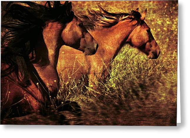 Western Western Art Greeting Cards - Like The Wind Greeting Card by Robert Albrecht