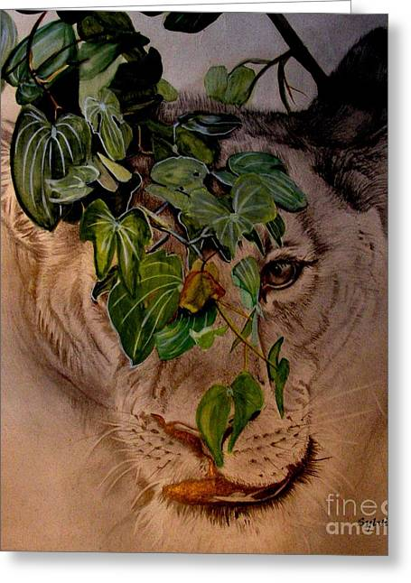 Zimbabwe Drawings Greeting Cards - Lioness on the Hunt Greeting Card by Sylvie Heasman
