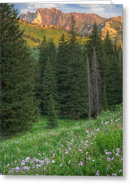 Little Cottonwood Canyon Greeting Cards - Little Cottonwood Canyon Utah Greeting Card by Utah Images
