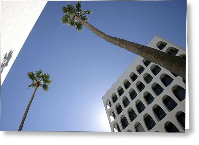 Cora Wandel Greeting Cards - Looking Up In Beverly Hills Greeting Card by Cora Wandel