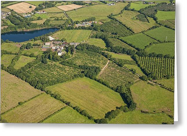 Agronomy Greeting Cards - Loughgall Orchards, Armagh Greeting Card by Colin Bailie