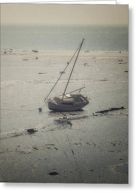 Sailing Boat Greeting Cards - Low Tide Greeting Card by Joana Kruse