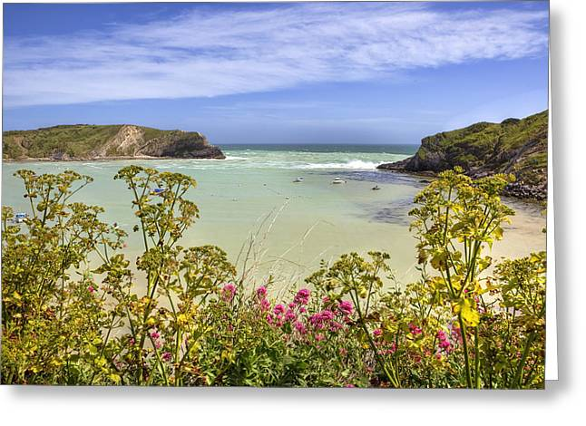Dorset Greeting Cards - Lulworth Cove Greeting Card by Joana Kruse